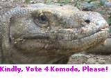 www.komodountukdunia.wordpress.com